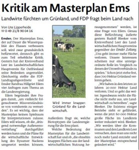 20150203 Kritik am Masterplan Ems EZ