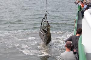 Muschelfischerei in der Nordsee