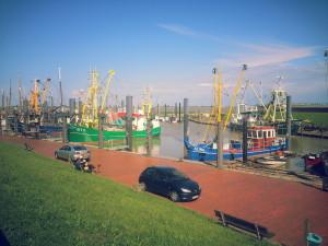 Fischerboote im Hafen von Ditzum. Wie lange noch?