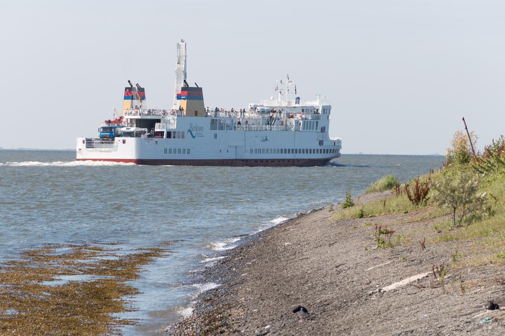 LNG-Borkumfähre MS Ostfriesland-8774